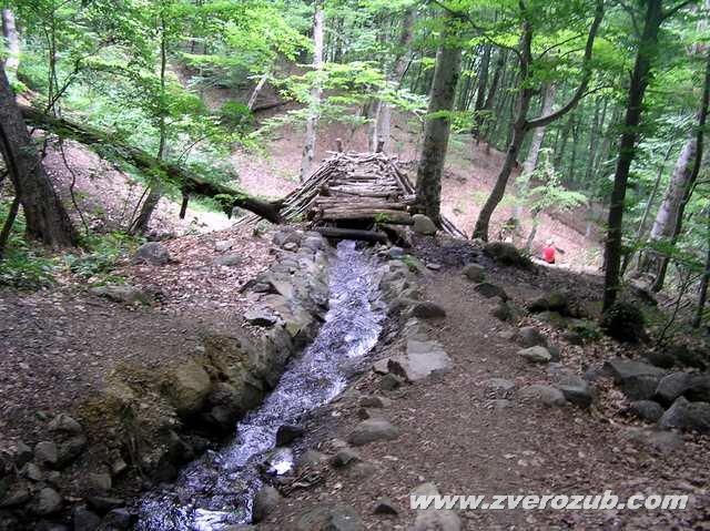 Ниже выхода родника Ай-Йори из естественного туннеля в монолитной скале устроены водотоки, деревянные мостики, скамьи для отдыха и прочие сооружения